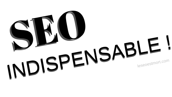 seo indispensable business